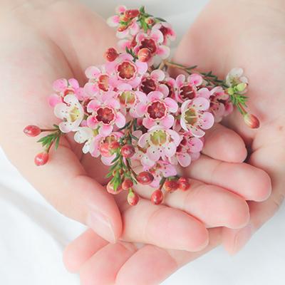 花を持つ女性の手